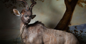 taxidermy creature